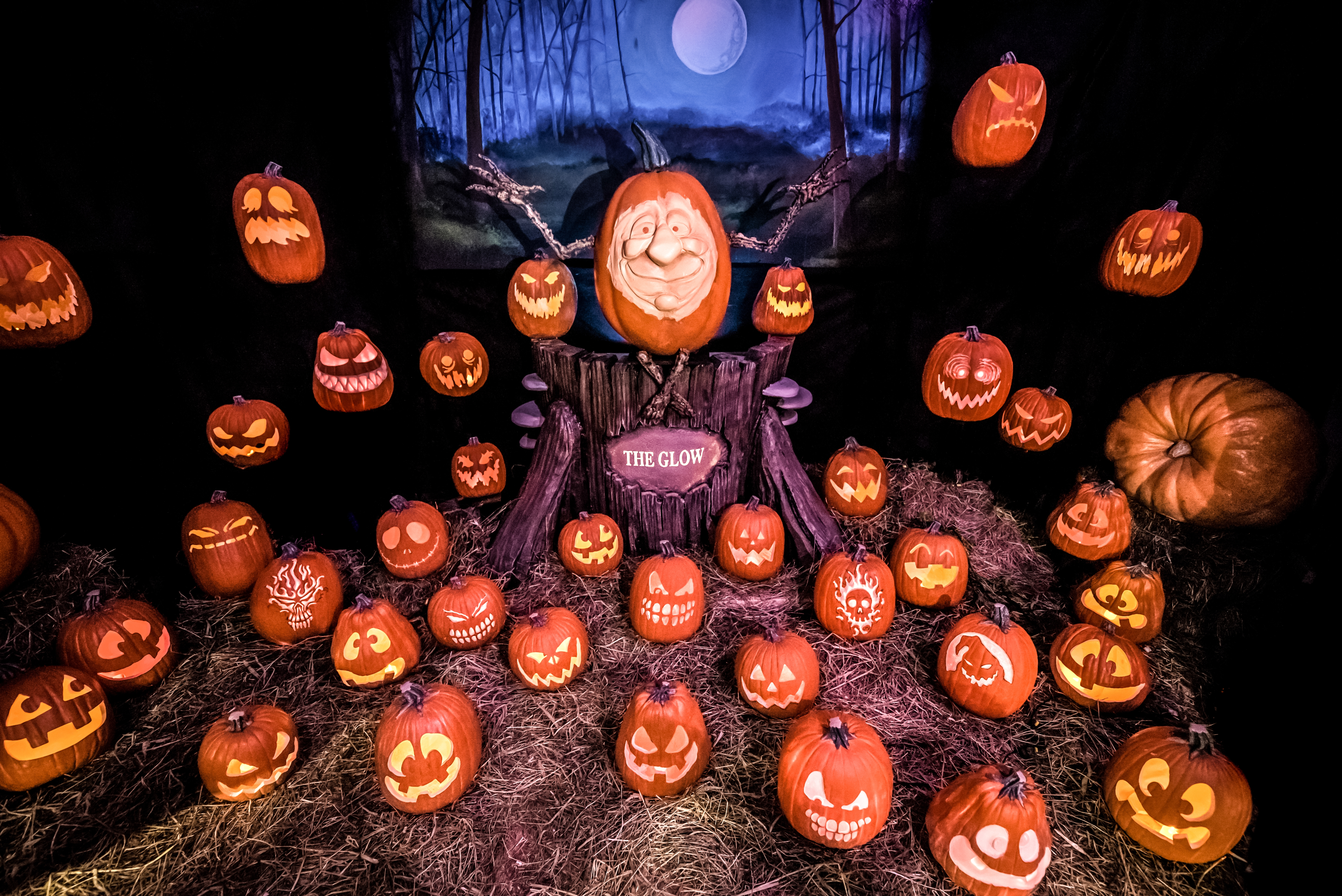 halloween events in charlotte | things to do for halloween in the qc
