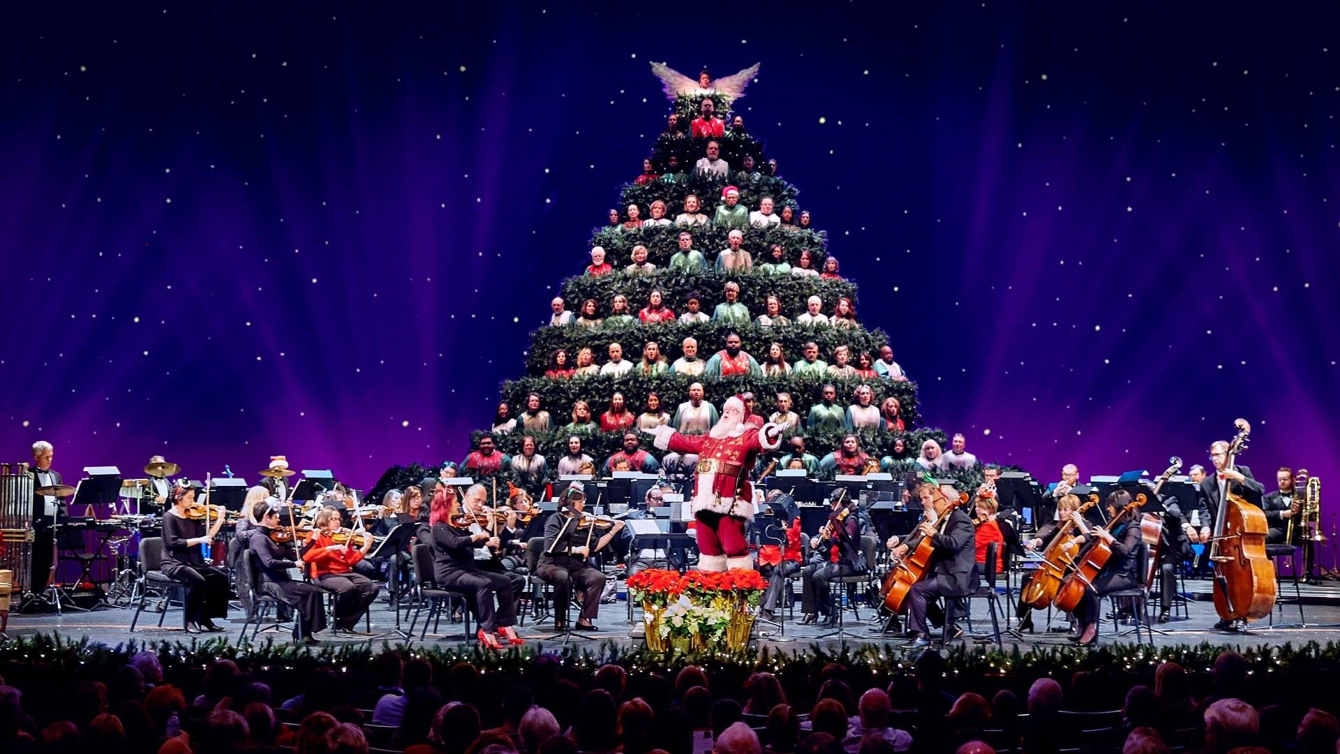 Magic Of Christmas 2020 Charlotte Nc The Singing Christmas Tree FOR KIDS!