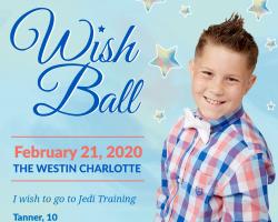 2020 Wish Ball
