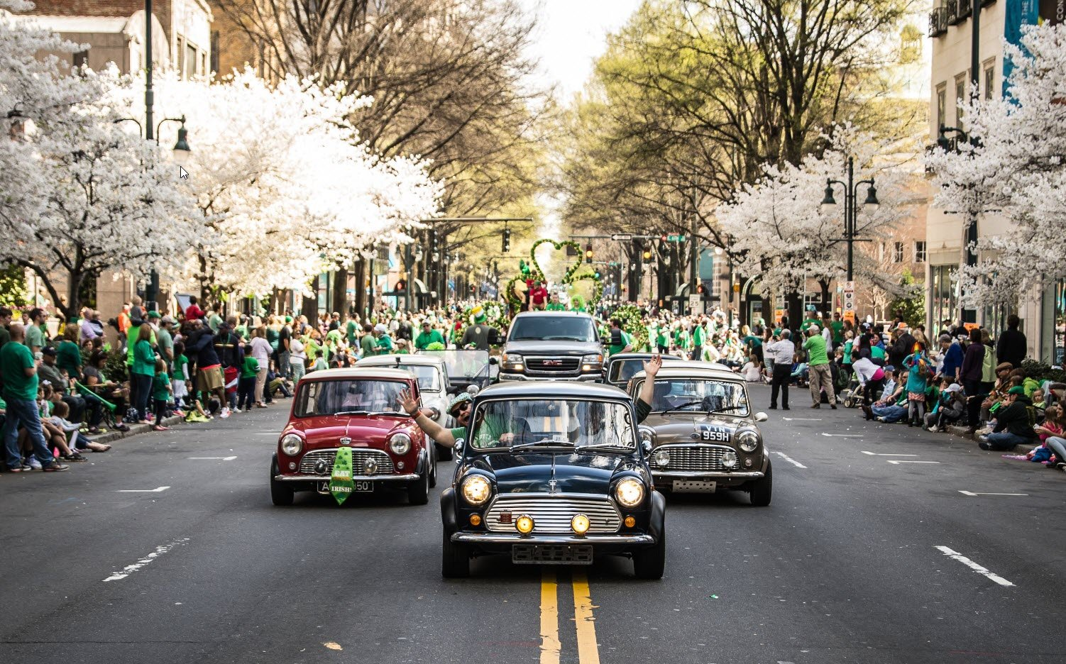 2019 St. Patrick's Day Parade and Charlotte Goes Green Festival