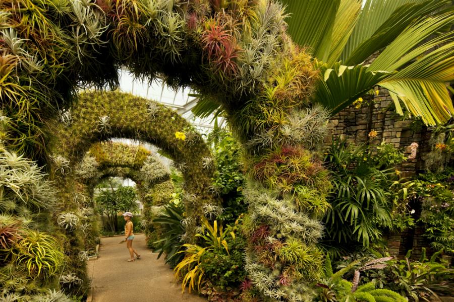 Daniel Stowe Botanical Garden Charlottes Got A Lot