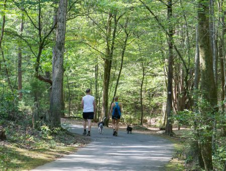 outdoors. Best Places To Enjoy The Outdoors In Charlotte